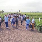 Exkursion moldawischer Betriebe zu rumänischen Soja-Bauern.
